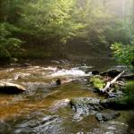 """Smokey River"" by joelmayo"