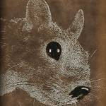 """Squirrel-025b"" by dittywriter"