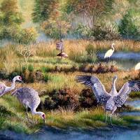 Sandhill Cranes - Patrons of the Marsh Art Prints & Posters by Daniel Butler