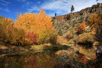 Autumn Reflections In The Susan River Canyon