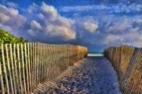 Miami Beach Fence