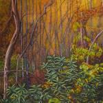 """""""Deep Woods"""" by ecoop"""
