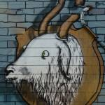"""Goat mural Graffiti detail on the textured wall"" by yurix"