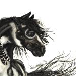 """Black White Pinto - Majestic Horse"" by AmyLynBihrle"