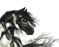 Black White Pinto - Majestic Horse