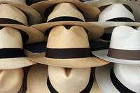 Beige and White Panama Hats