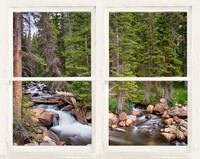 Forest Stream Rustic White Washed Window View