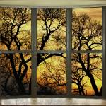 """Golden Forest Bay Picture Window View"" by lightningman"