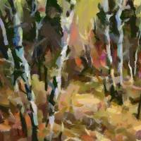 birch trees in autumn Art Prints & Posters by Dragica MICKI FORTUNA