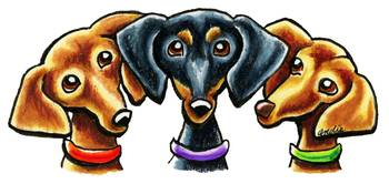 Smooth Dachshund Trio