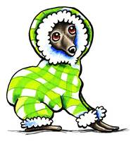 Italian Greyhound in Snowsuit