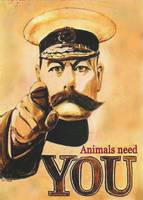 Kitchener Says Animals Need You!
