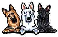 German Shepherd Dog Trio