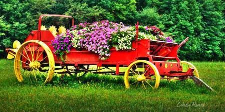 Floral Wagon