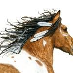 """Hopa Curly Majestic Horse"" by AmyLynBihrle"
