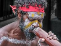 Aboriginal Playing Didgeridoo