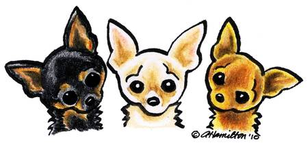 Smooth Chihuahua Trio
