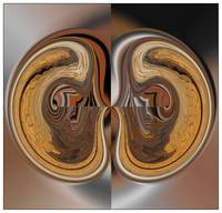 Kidneys abstract