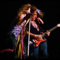 Aerosmith's Joe Perry with Sea Shepherd Guitar Art Prints & Posters by John Tribolet