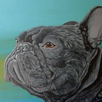 Black French Bulldog-Carla Smale