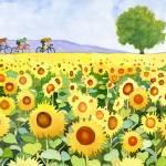 """Sunflowers & bicyclists"" by studiobythesound"