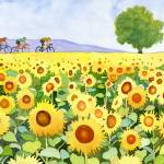 """Sunflowers & bicyclists"" by studiobythesound"