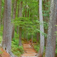 Let The Trail Lead You There Art Prints & Posters by Photography Moments