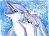 Laughing Dolphins