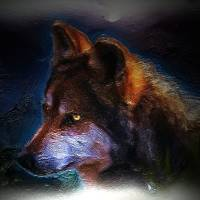 Shadow Wolf by Gary Miles