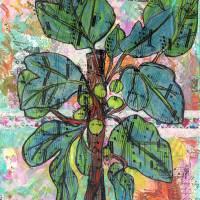 Fig Tree Botanical Art Prints & Posters by Miriam Schulman