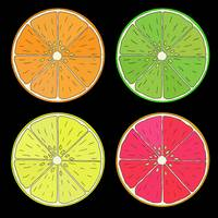 Citrus Fruit 2