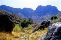 Magestic Gran Canaria Landscape Tourist Do NOT See