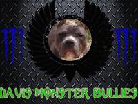 monster bullies new version 2