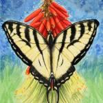 """Swallowtail"" by Larissa"