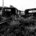 """Erick 09 16 2012 044"" by jwoodphoto"