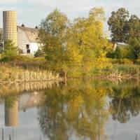 Farm Reflection Art Prints & Posters by Roseann Riggi-Knudson