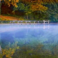 Fall Foliage in New England Art Prints & Posters by Dapixara Art