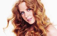 Amy Adams Painting