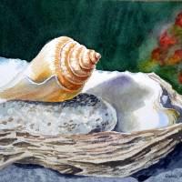 Seashells Art Prints & Posters by Irina Sztukowski