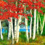 """Birch Trees in the Fall"" by ArtbySachse"