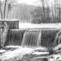 Davidson Mill Pond in Black and White Art Prints & Posters by Louise Reeves