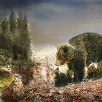 Sow Cubs and Friends Art Prints & Posters by Emily Colosimo