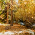 """Autumn creek"" by lizmix"