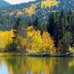 """Autumn lake reflection"" by lizmix"