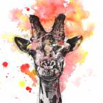 """Smiling Giraffe Animal Portrait"" by idillard"