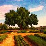 """Vineyard Garden"" by Bracco"