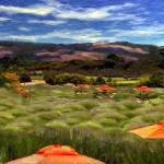 """""""Lavender Field"""" by Bracco"""
