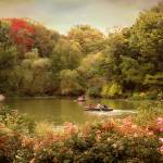 """Central Park Rowers"" by JessicaJenney"