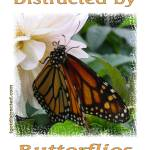 """Distracted by Monarch Butterflies 04173"" by quotes"