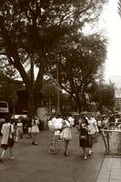 Orchard Road Singapore - Street B/W